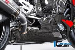 BMW_s1000r_carbon_ms18_1