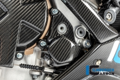 BMW_S1000RR_2019_Racing_Ilmberger_Carbon_10