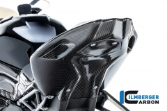 BMW_S1000RR_2019_Racing_Ilmberger_Carbon_12