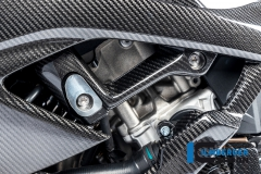 BMW_S1000RR_2019_Racing_Ilmberger_Carbon_20
