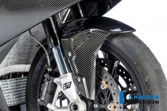 BMW_S1000RR_2019_Racing_Ilmberger_Carbon_9