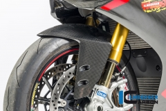 Ducati_1299_Panigale_Racing_Carbon_18_2
