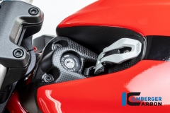 Ducati_Monster_1200S_2017_carbon_ilmberger_20