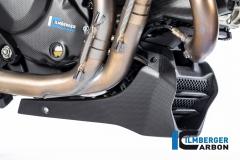 Ducati_Monster_1200S_2017_carbon_ilmberger_23