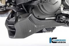 Ducati_Monster_1200S_2017_carbon_ilmberger_26