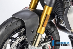 Ducati_Monster_1200S_2017_carbon_ilmberger_30