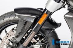 Ducati_XDiavel_carbon_19_2_DG