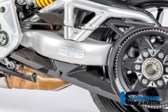 Ducati_XDiavel_carbon_21_2_DG